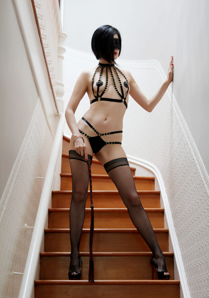 Bay Area based Dominatrix wearing exquisite leather lingerie, thigh high fishnet stockings, stiletto heels, holding a flogger.
